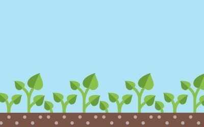 Dishing The Dirt on Green Waste Recycling